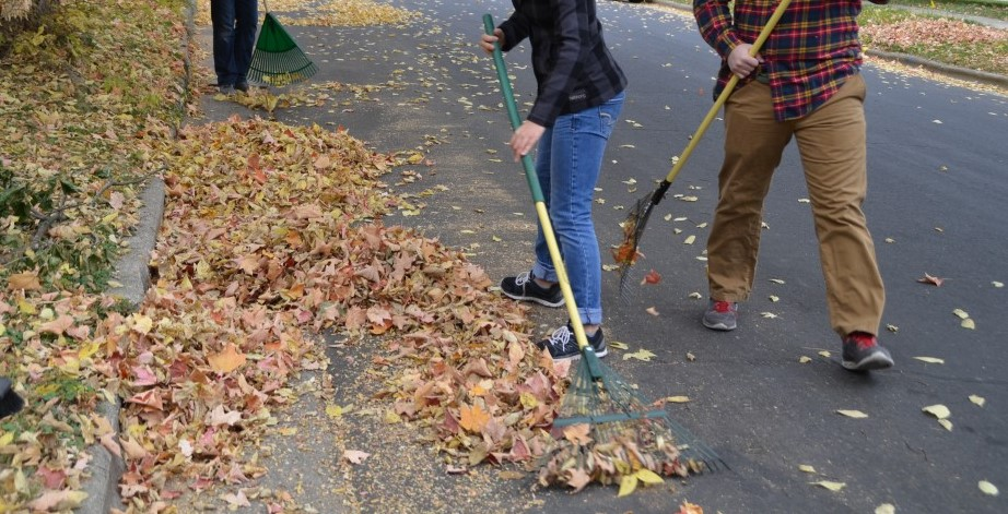 Leaf_Raking.jpg